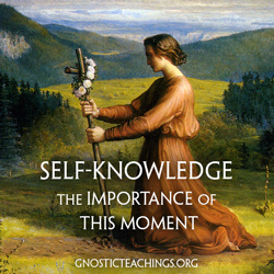 self-knowledge course