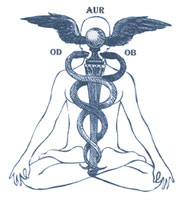 http://gnosticteachings.org/images/stories/alchemy/caduceus.jpg