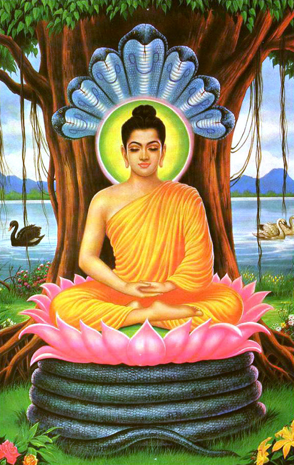 buddha-with-seven-serpents