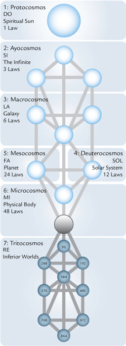 tree cosmos laws sun fmt1