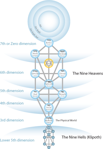 tree-of-life-dimensions