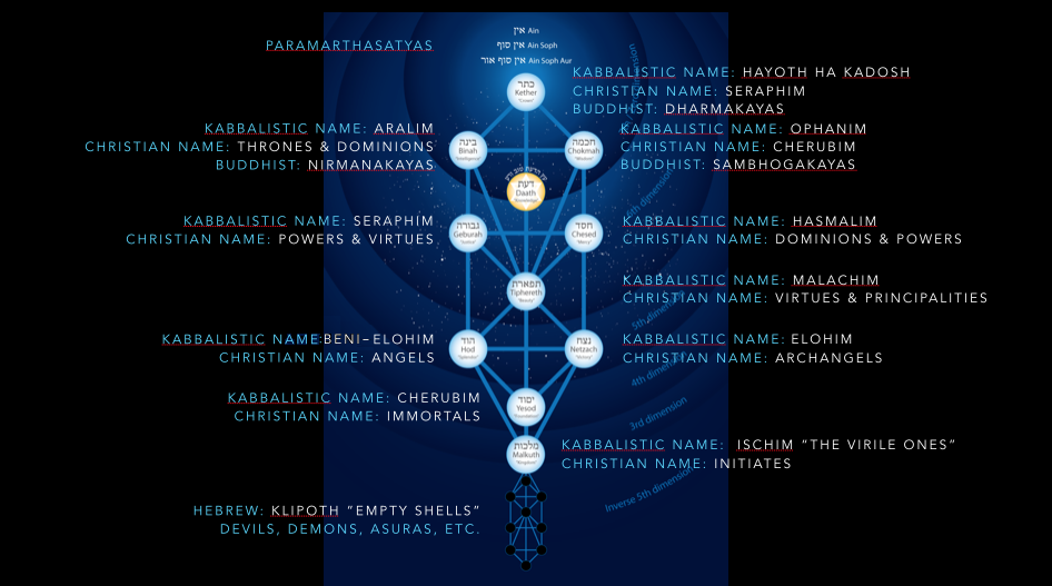 tree of life names new