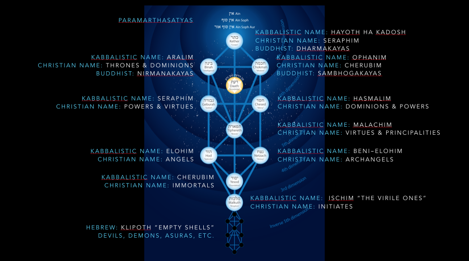 tree of life names