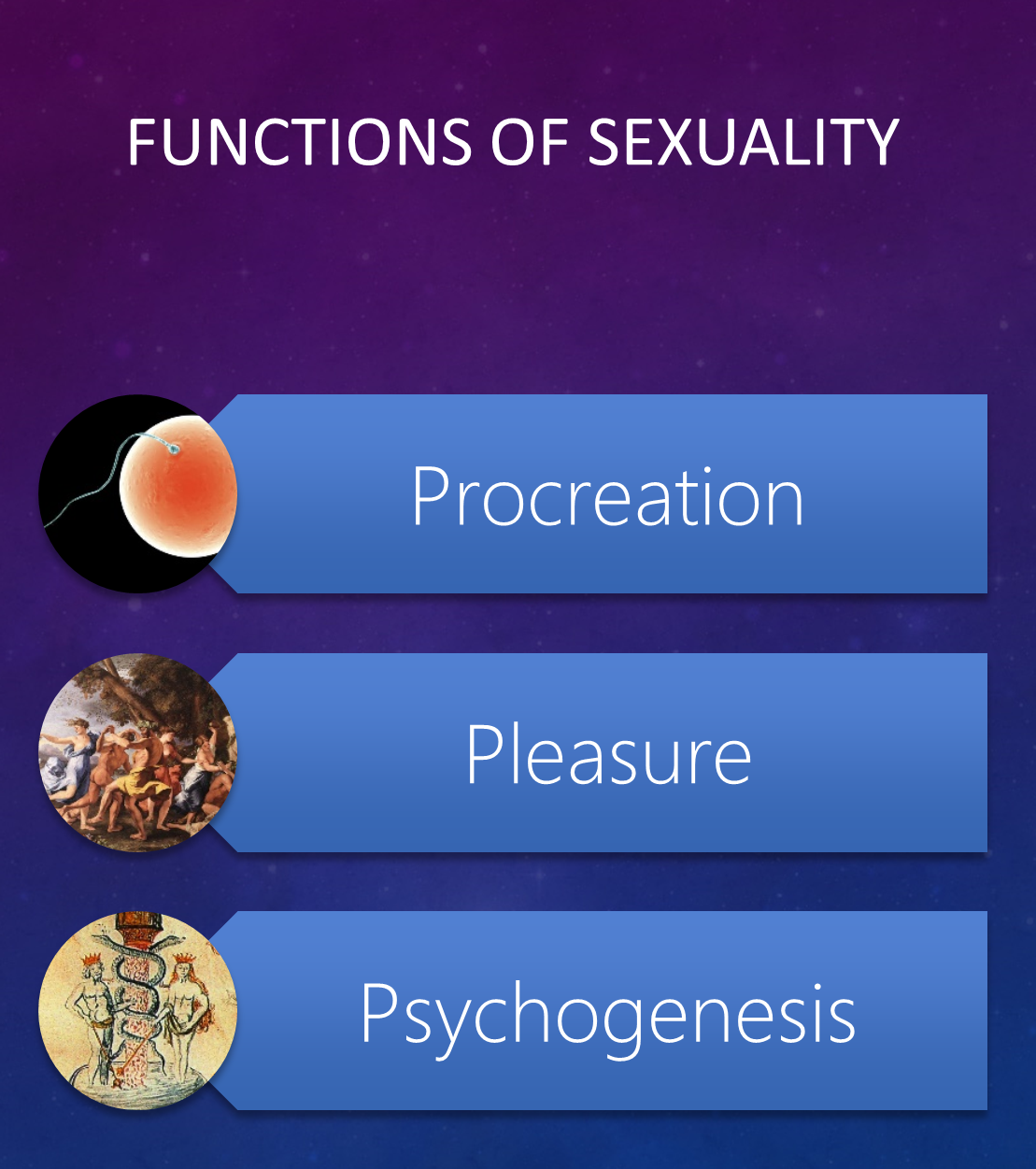 Functions of Sexuality