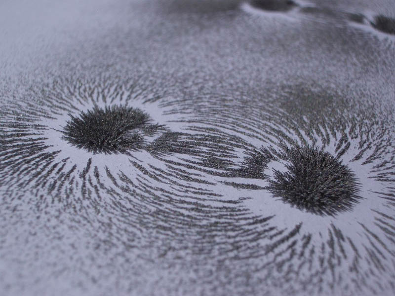 Iron shavings in the shape of magnetic fields.